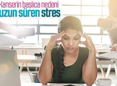 Kanserin tetikleyicisi 'stres'
