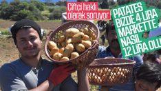Patates tarladan vatandaşın sofrasına gelene kadar zamlanıyor