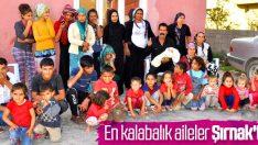 Türkiye'nin aile istatistikleri yayınlandı