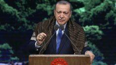 Başkan Erdoğan Dünya Çevre Günü dolayısıyla bir mesaj yayımladı