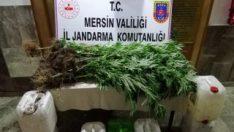 Mersin'de 40 kilo esrar yakalandı