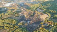 Antalya'da 35 hektarlık orman yandı