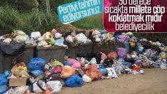 Balıkesir Erdek'te çöpler toplanmıyor