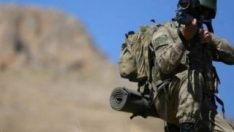 Bitlis'te öldürülen iki terörist gri kategoriden çıktı