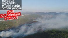 Bursa'da 9 ayrı noktada orman yangını