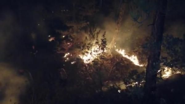 Eskişehir'de orman yangını söndürülemedi