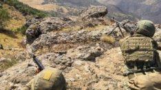 Hakkari ve Siirt'te 5 terörist öldürüldü