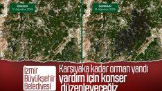 İzmir'de belediyeye göre 5 bin hektar alan kül oldu