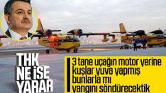Pakdemirli'den THK uçakları açıklaması