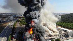 Tuzla Organize Sanayi Bölgesi'nde yangın