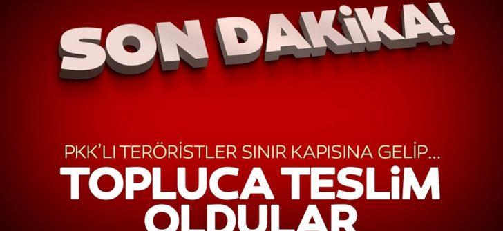 Silopi'de 4'ü kadın 6 PKK'lı terörist teslim oldu