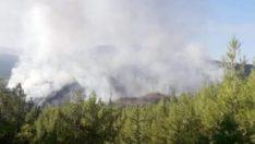 Kaş'ta orman yangınına müdahale sürüyor