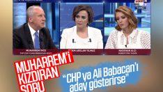 Muharrem İnce Ali Babacan sorusuna tepki gösterdi