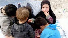 Suriye'de PKK kontrolündeki kampta çocuklar ölüyor