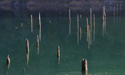 Bolu'da göl suyunun çekilmesiyle ilginç görüntüler oluştu