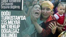 Doğu Türkistan'da doğalgaz rezervi bulundu