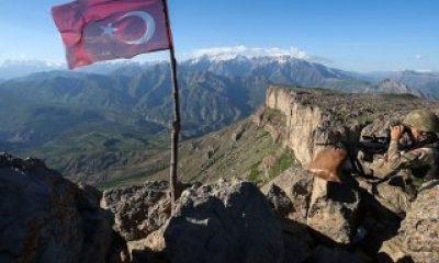 Gri listedeki 2 PKK'lı terörist Van'da teslim oldu