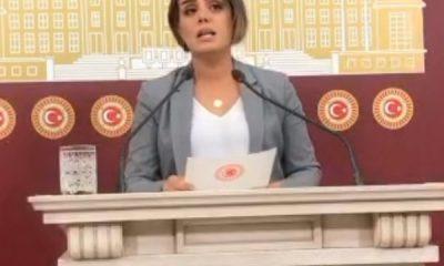 HDP, Barış Pınarı Harekatı yalanlarına devam ediyor