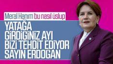 Meral Akşener'in tepki çeken Erdoğan sözleri