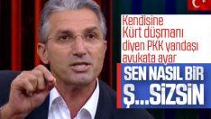Nedim Şener'den PKK sempatizanı avukata ayar