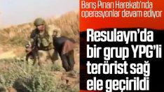 Resulayn'da bir grup terörist sağ ele geçirildi