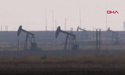 TPAO, Nusaybin'de petrol arayacak