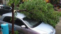 Trakya'daki sağanak ve rüzgar yağış hayatı felç etti