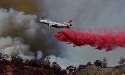 Ünlüler de Los Angeles'taki yangından kaçıyor