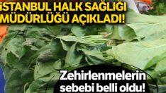 Istanbul Halk Sağlığı Müdürlüğü'nden ıspanak zehirlenmeleri ile ilgili açıklama