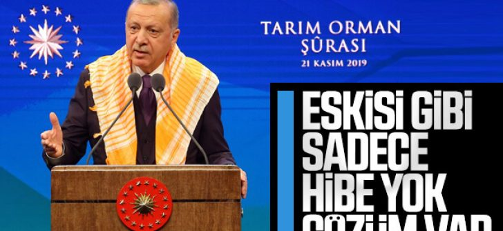 Cumhurbaşkanı Tarım Orman Şurası'ndan alınan kararları açıkladı