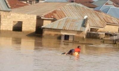 Nijerya'da sel nedeniyle binlerce insan evsiz kaldı