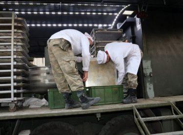 TSK, Resulayn'da günde 5 bin sıcak ekmek dağıtıyor