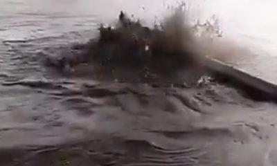 Deyrizor'da her yerden petrol fışkırıyor