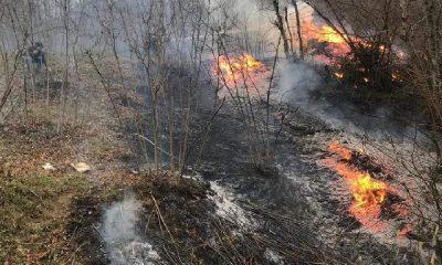 Karadeniz'de çıkan yangınları PKK sahiplendi