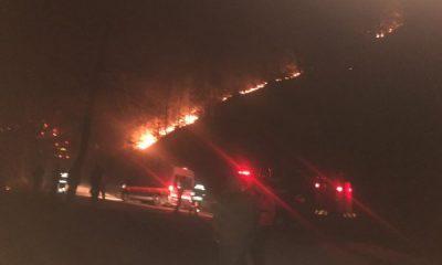 Trabzon'da 10 ilçede 22 orman yangını