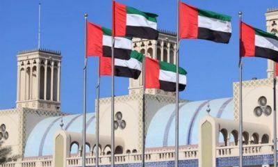 BAE Türkiye'nin Libya tezkeresini kınadı