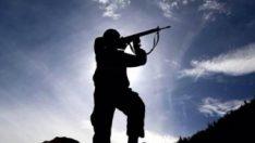 2 PKK'lı terörist daha teslim oldu