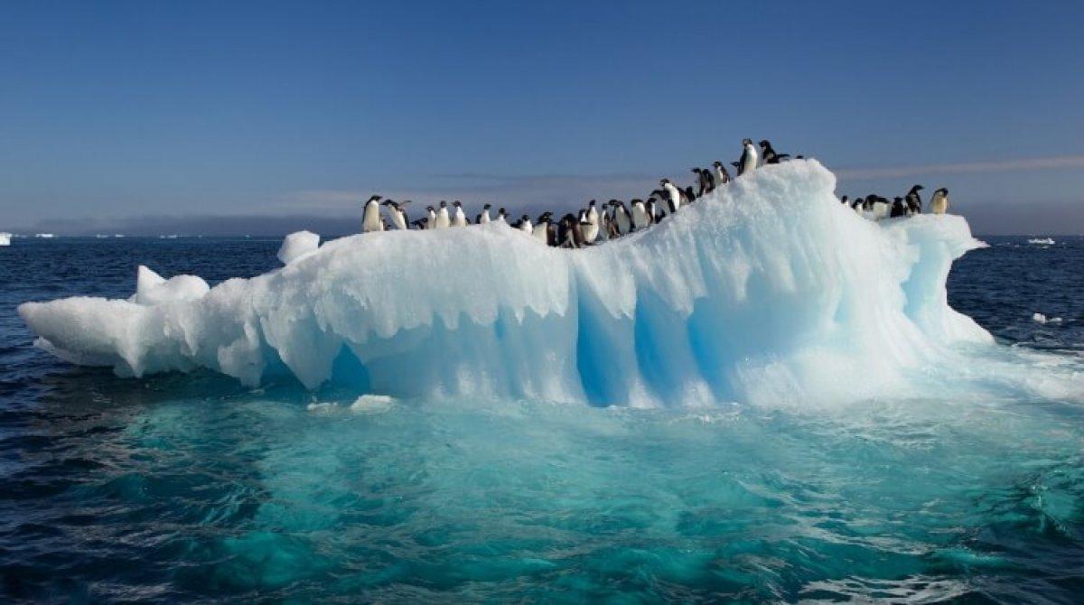 Antarktika'da sıcaklık 20.7 dereceye çıktı