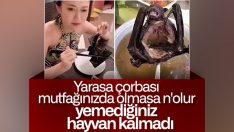 Çin'de yarasa çorbasıyla ilgili yeni açıklama