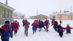 Kar tatili ilan edilen iller ve ilçeler