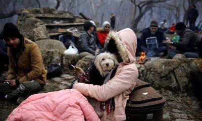 Köpeğiyle Avrupa'ya geçmeye çalışan göçmen