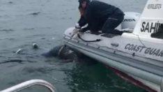 Mersin'de balıkçıların ağına 2 ceset takıldı