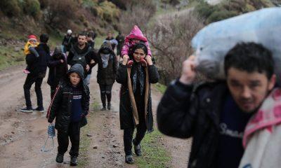 Türkiye'den çıkan göçmen sayısı açıklandı
