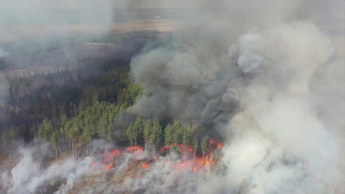 Çernobil'de 10 gündür süren orman yangını söndürüldü