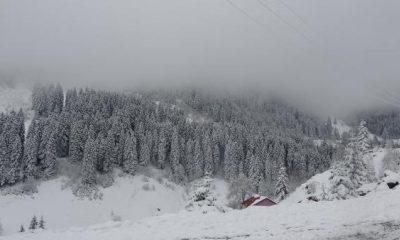 Doğu Karadeniz'in yüksekleri beyaza büründü