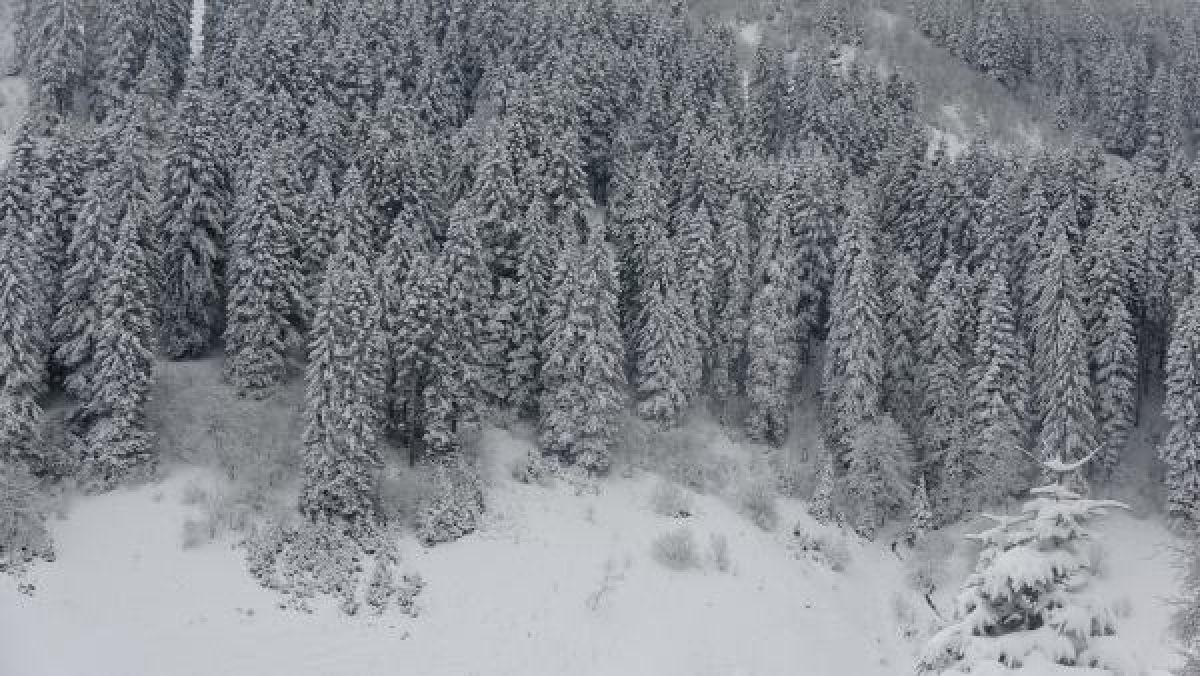 Doğu Karadeniz'in yükseklerinde kar yağışı -9