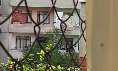 İstanbul'da mangal sevdası çatıya çıkardı