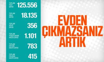 Türkiye'de koronadan ölenlerin sayısı 356'ya yükseldi