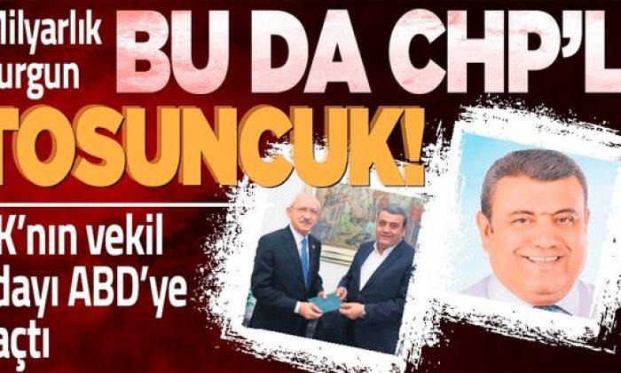 Bu da CHP'li Tosuncuk!